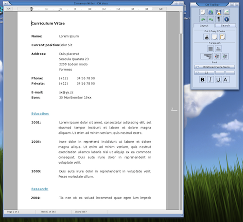 Cinnamon Writer pro MorphOS